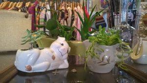 Porcelain planters, $18
