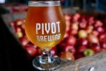 Pivot Brewing Company